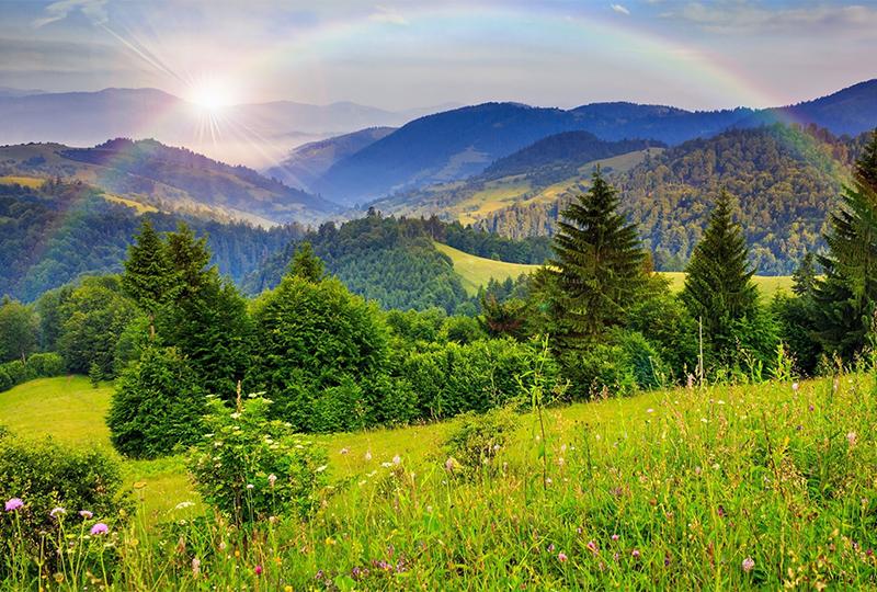 Отдых и лечение в Поляне (Закарпатье)