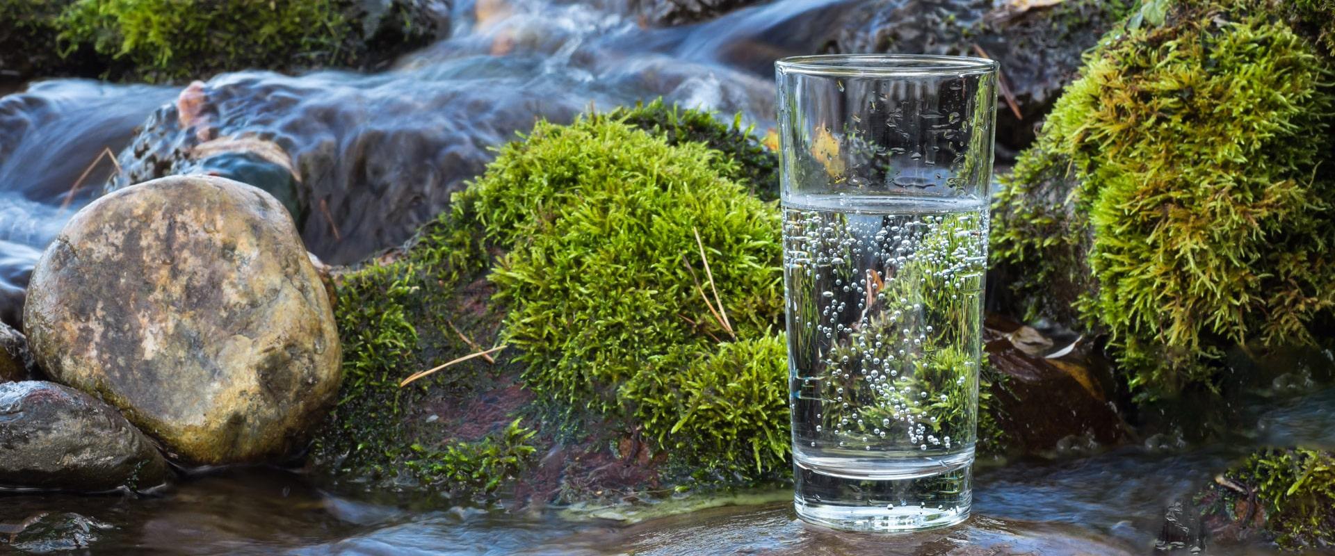 Мінеральні води курорту Трускавець. Що варто знати